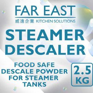 Steamer descaling powder